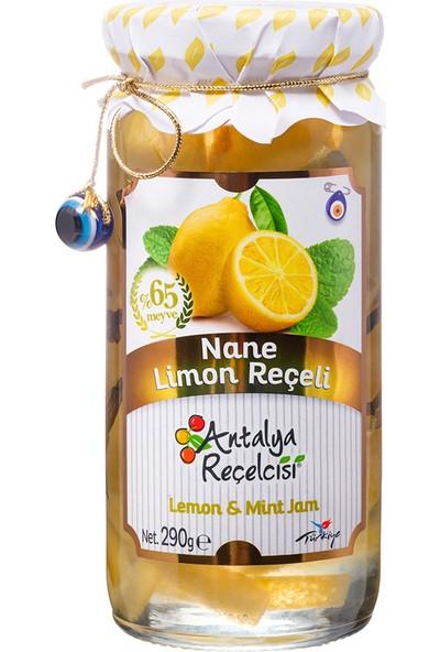 Antalya Reçelcisi Nane Limon Reçeli %65 Meyve Gurme Serisi