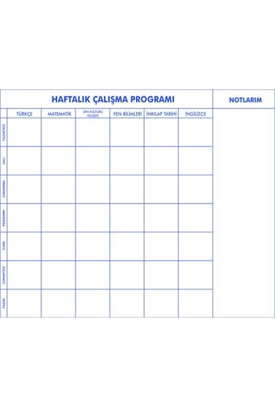 Evbuya İlk ve Orta Okul Için Haftalık Çalışma Programlayıcı Akıllı Kağıt 120 x 100 cm