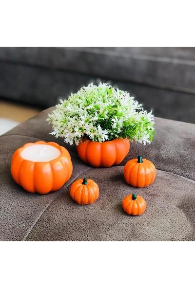 Masif Dekor Turuncu Balkabağı Saksıda Mum ve Yapay Çiçek 5li Set