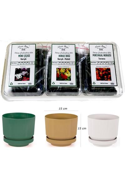 Minia Bahçe TİP11 Çiçek Çimlendirme Kit