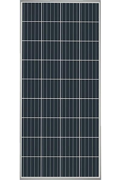 Alfa Solar 165 W Poly Güneş Paneli