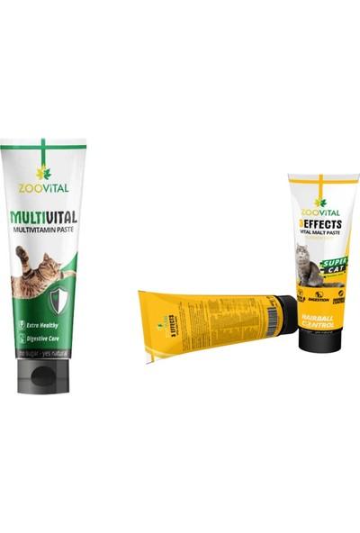 Zoovital Anti Hairball Malt Paste Kedi Macunu 100 gr + Multi Vitamin Paste Kedi Vitamini Macunu 100 gr