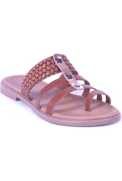 Ustalar Ayakkabı Taba Kadın Parmak Arası Terlik 539.02