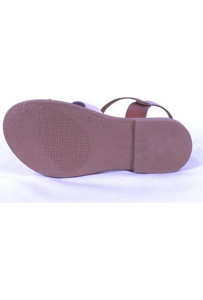 Ustalar Ayakkabı Taba-Bej Kadın Sandalet 539.04