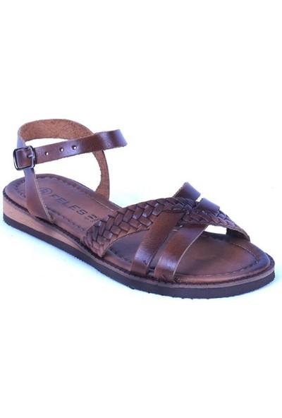 Ustalar Ayakkabı Taba Kadın Sandalet 319.00001