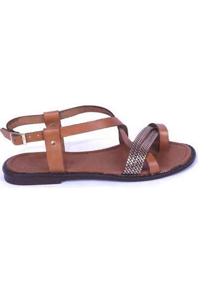 Ustalar Ayakkabı Taba Kadın Parmak Arası Sandalet 319.102