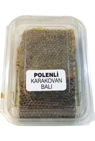 BOZDAĞ Ödemiş Polenli Karakovan Balı 500 gr