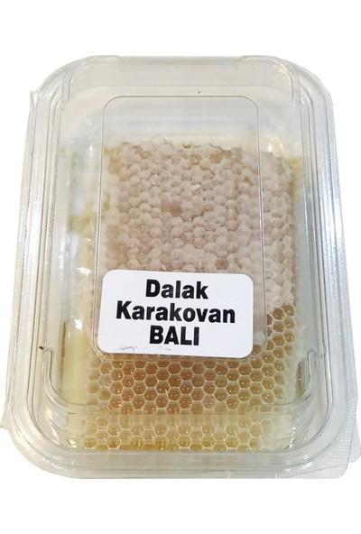 BOZDAĞ Ödemiş Dalak Karakovan Balı 500 gr