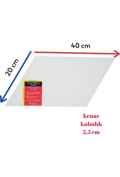 Özcan Gencer Art Tam Profesyonel Paralelkenar Tuval 20 x 40 cm
