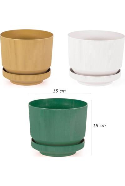 Minia Bahçe 3'lu Plastik Tabaklı Saksı (3 Renk)