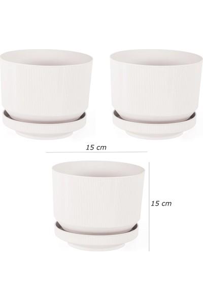 Minia Bahçe 3'lu Plastik Tabaklı Saksı (Beyaz)