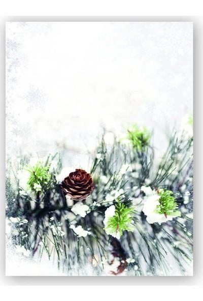 Caka Tablo Ahşap Tablo Kar Çam Ağacı Dalı Kozalak