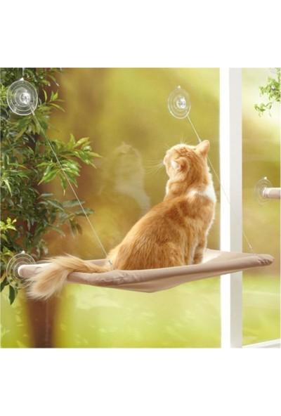 Tineke Cama Asılan Kedi Yatağı Minderi (Yapışan Vantuzlu) Kedi Oyuncakları