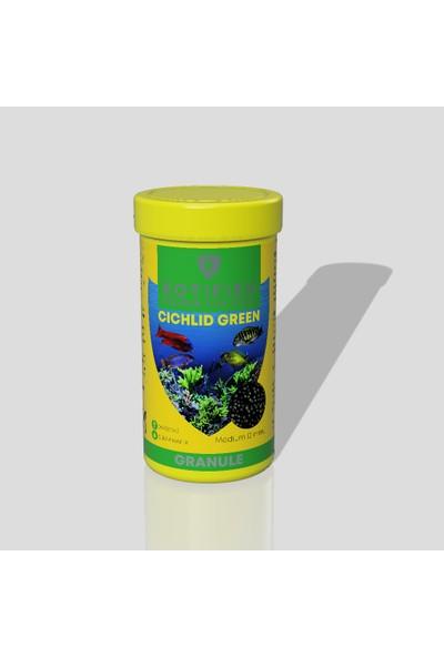 Rotifish Cichlid Green Medium Çiklit Balığı Yemi 250 ml 75 gr