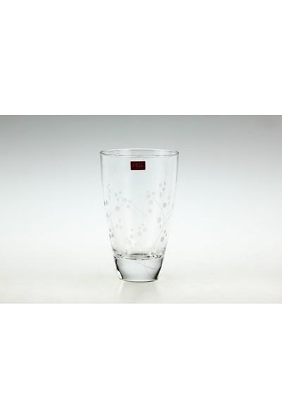 Ancel Cristal D'arques Enchantement 4'lü Meşrubat Bardağı 36 cl