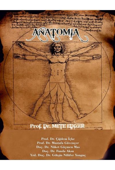 Anatomia - Mete Edizer