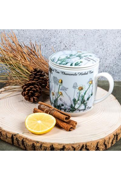 Güral Süzgeçli Bitki Çayı Bardağı
