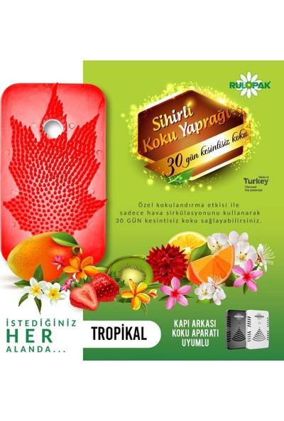 Rulopak Kapı Arkası Kokusu Sihirli Koku Yaprağı Tropikal 10'lu