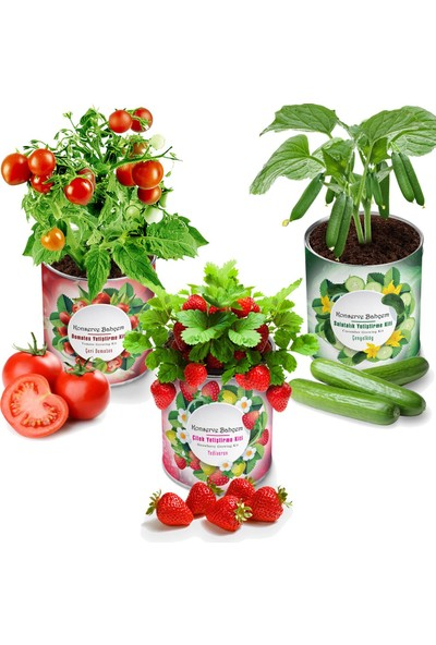Konserve Bahçem Çilek + Salatalık + Domates 3'lü Yetiştirme Kiti