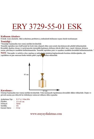 Eray Aydınlatma Ery 3729-55-01 Esk Eskitme Tekli Avize