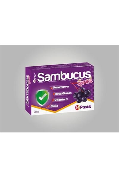 Dnz Sambucus Special Pastil 24