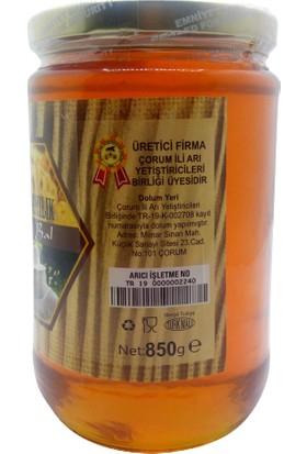 Karakuş Arıcılık Süzme Çiçek (Kekik) Balı 850 gr