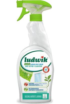 Ludwik Cam ve Ayna Temizleme Spreyi 750 ml