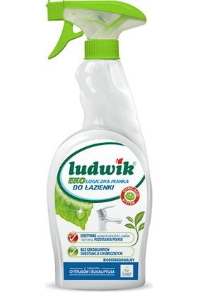 Ludwik Ekolojik Banyo Temizleme Köpüğü 750 ml