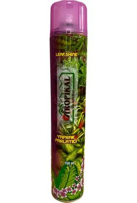 Tropikal Yaprak Parlatıcı 750 ml