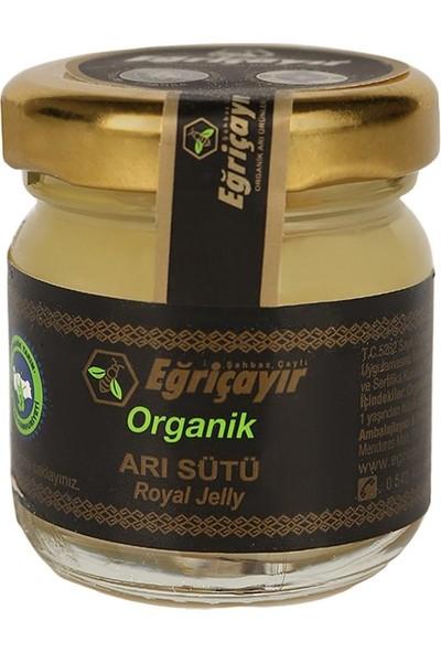 Eğriçayır Organik Arı Sütü 30g