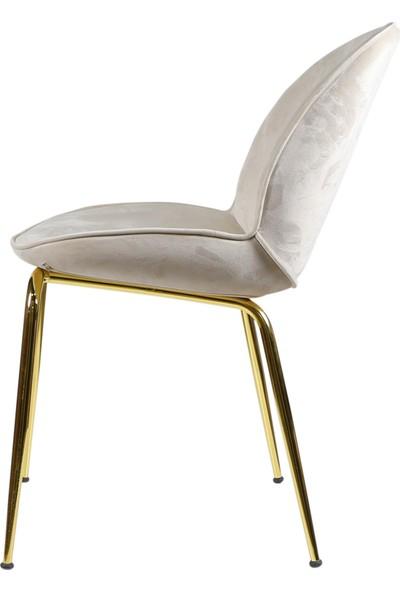 Sandalye Online Cara Yemek Masası Sandalyesi