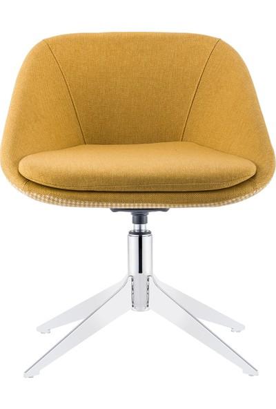 Sandalye Online Turta Bekleme Sandalyesi
