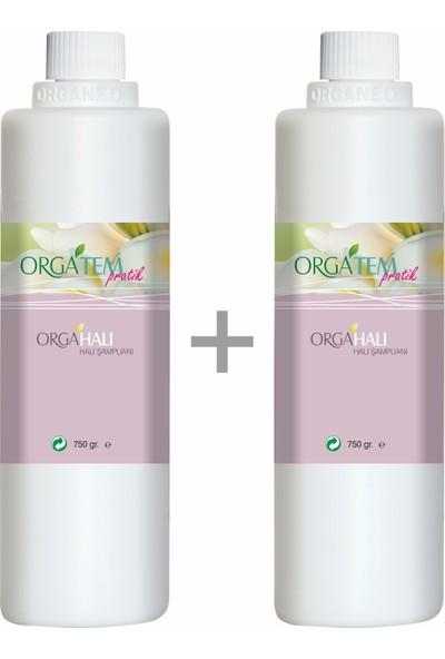 Orgatem Elde Yıkama Halı Şampuanı 750 Gr. 2'li