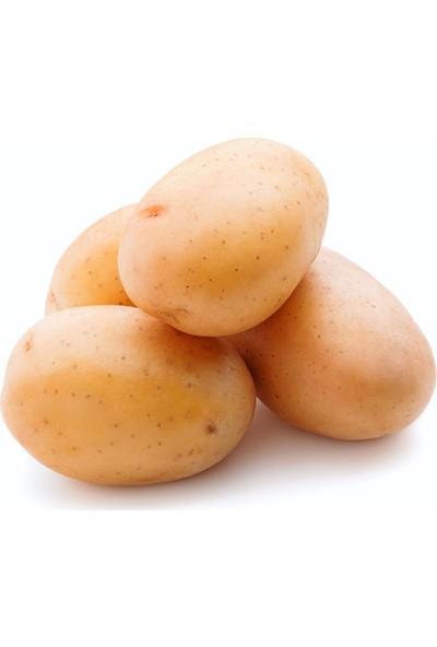 Meyve Ağacım Baby Patates - 5 kg