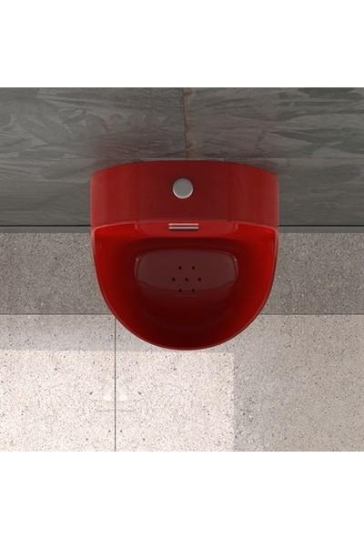 Lucco Avva 36 cm Fotoselli Pisuvar Kırmızı