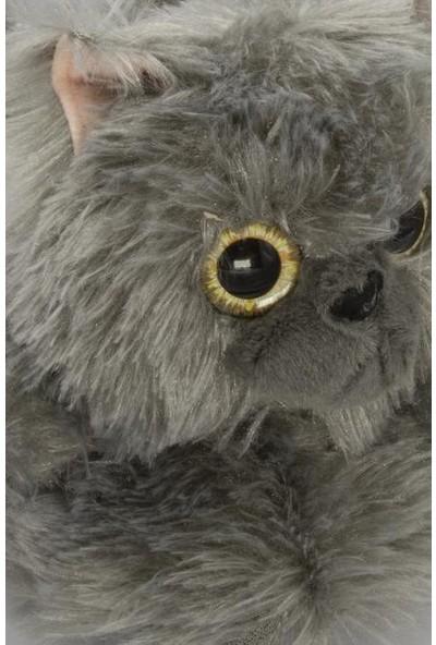 Twigy TT0752 Kedi Gri Kadın Kışlık Panduf