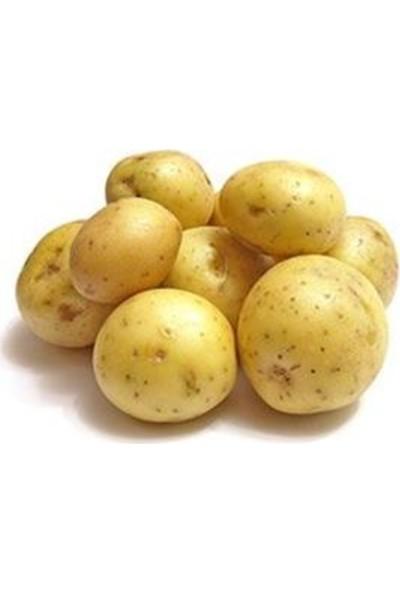 Mutlu Yöresel Baby Patates 500 gr