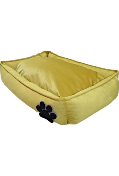 Paticik Köpek Yatağı