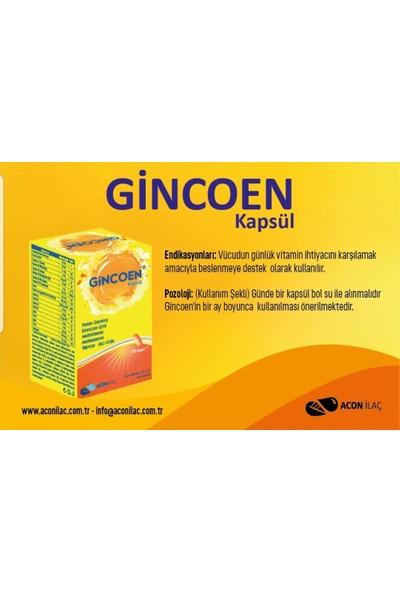 Acon İlaç Gincoen 30 Kapsül Multivitamin Koenzim Q10 Panax Ginseng 3 Adet