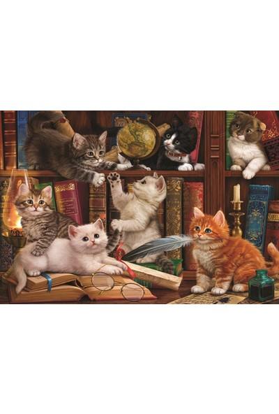 Anatolian Kediler ve Kitaplar 500 Parça Puzzle