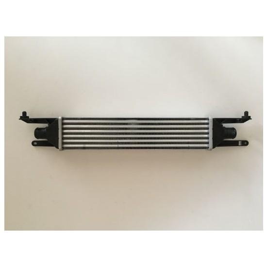 Gust Turbo Radyatörü Fıat Grande Punto 1.3 Mjtd 2008> / Punto Iıı 1.3 Mjtd 2012> / Punto Evo 1.3 Mjtd 2008> 90HP Core Düz Vites ( 55700449 - 51837369 )