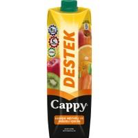 Cappy Destek 1 L