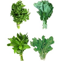 Aktarix Süper 4 'lü Yeşillik Paketi - Maydanoz, Roka, Nane, Tere Otu + 500 Tohum Yerli
