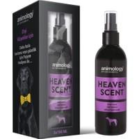 Animology Heaven Tüm Irklar Için Dişi Köpek Parfümü 4X150 ml