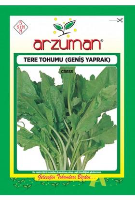 Arzuman Tere Tohumu 10 gr