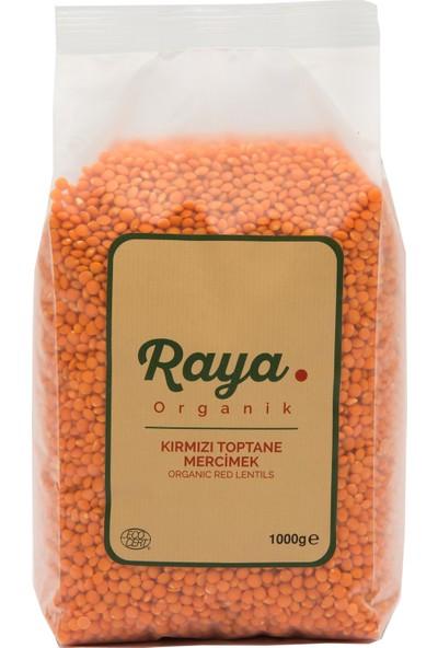 Raya Organik Kırmızı Mercimek 1 kg