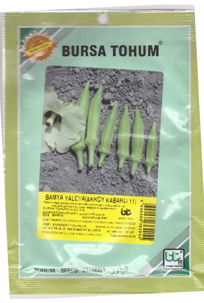 Bursa Tohum Bamya Tohumu 10 gr