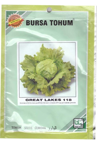 Bursa Tohum Great Lakes Marul Tohumu 10 gr