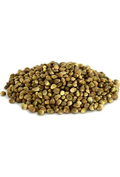 Kenevir Tohumu 100 gr
