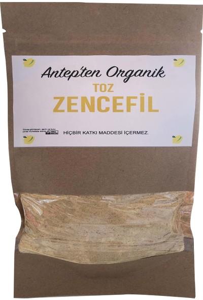 Antepten Organik Toz Zencefil 250 gr